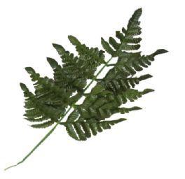 salg af Bregneblad grøn, 50 cm - kunstigt blad