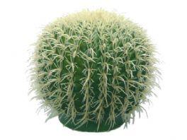 salg af Kaktus kugle 25cm