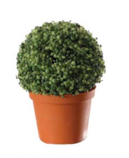 salg af Grandensis 18 cm. - kunstig plante - kunstig blomst
