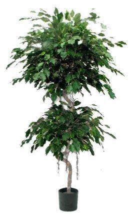 salg af Ficus spiral 190 cm. - Kunstige træer