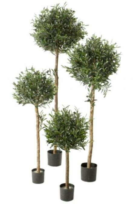 salg af Oliven 160 cm. - Kunstige træer