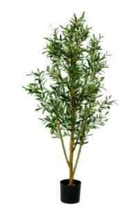 salg af Oliven 160