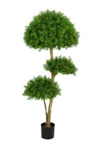 salg af Eucalyptustr� 130
