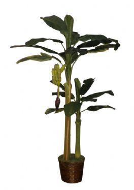 salg af Bananpalme dobbelt med bananklase 180/115 cm. - kunstig palme