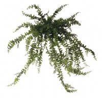 salg af Bregne, 100 cm. - kunstige planter
