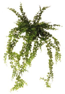 salg af Maidenhair bregne hængebusk 110 cm. - kunstig plante