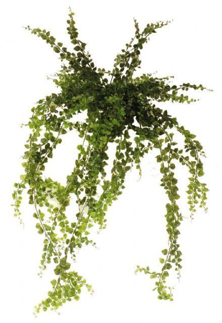 salg af  Maidenhair, 110 cm. - kunstige planter