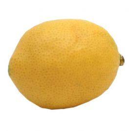 salg af Citron, 8,5 cm. - kunstige frugter