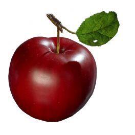 salg af Æble, rød, 7,5 cm.