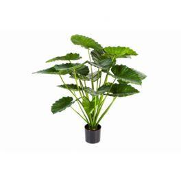 salg af Alocasia, 95 cm. - kunstige planter