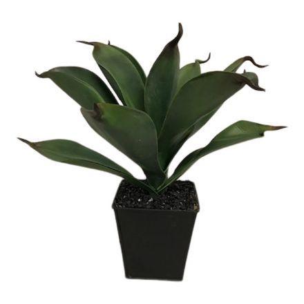 salg af Aloe plante - 30 cm. - kunstige planter