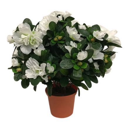 salg af Hvid Azalea, 35 cm. - kunstige blomster