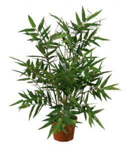 salg af Bambus i potte - højde 38 cm. - kunstig grøn plante