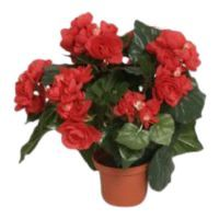 salg af Rød Begonia, 30 cm. - kunstige blomster