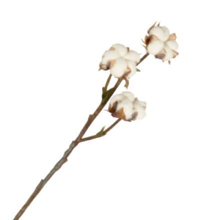 salg af Bomuldsgren, 40 cm. - kunstige blomster
