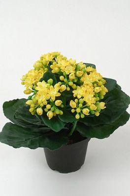 salg af Brændende kærlighed gul, 20 cm. - kunstig blomst
