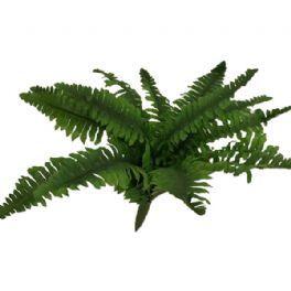 salg af Bregne, H20*B20 cm. - kunstige planter