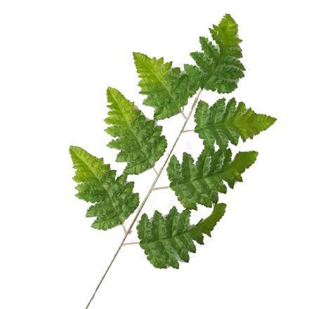salg af Bregneblad, lys grøn, 50 cm. - kunstigt blad