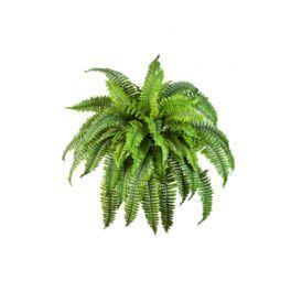 salg af Bregne uden potte - 50 blade Ø 80 cm- kunstig plante