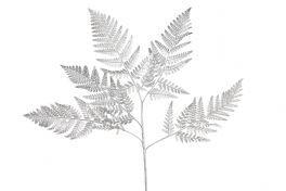 salg af Bregneblad, sølv - 85 cm. - kunstige blade