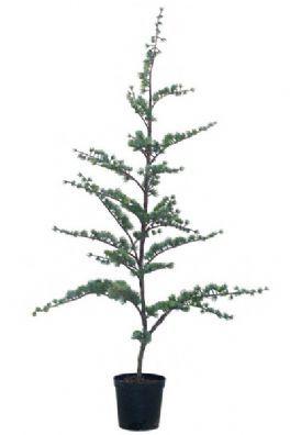 salg af Cedertræ 80 cm. - kunstig træ