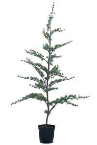 salg af Cedertræ, 80 cm. - kunstige træer