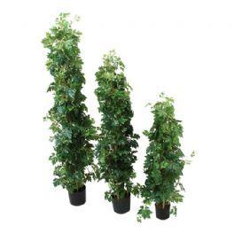 salg af Cissus søjle træ - 110 cm. - kunstige træer