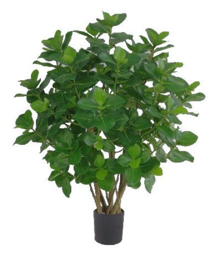 salg af Clusia 90 cm. - Kunstige træer