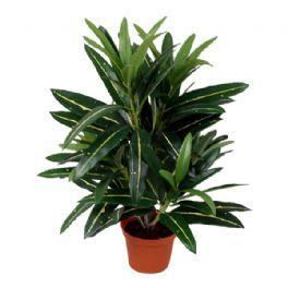 salg af Croton, 40 cm. - kunstig plante
