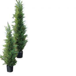 salg af Cypres,180 cm. - kunstieg træer