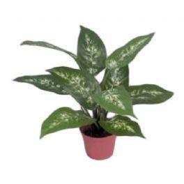 salg af Dieffenbachia, grøn/hvid - 35 cm. - kunstige planter