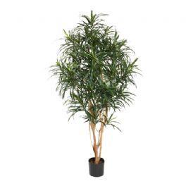salg af Dracena reflexa, 150 cm. - kunstige træer