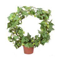 salg af Efeu bøjle højde 35 cm. - kunstig plante - kunstig blomst
