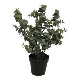 salg af Eucalyptus, grå look - 30 cm. - kunstige planter
