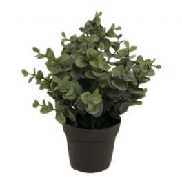 salg af Eucalyptus, grå look - 20 cm. - kunstige planter