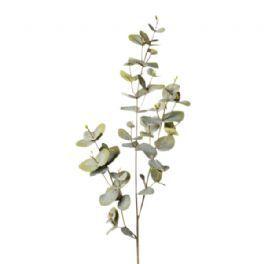 salg af Eucalyptus gren grøn, 70 cm - kunstig gren