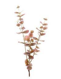 salg af Eucalyptus gren lilla, 70 cm. - kunstige grene
