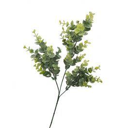 salg af Eucalyptus gren - mørk støvgrøn - 65 cm. - Kunstig gren