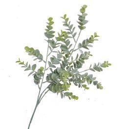 salg af Eucalyptus gren - støvgrøn - 70 cm. - Kunstig gren