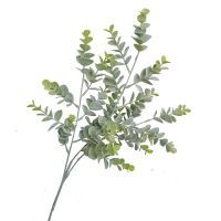 salg af Eucalyptus gren, støvgrøn - 65 cm. - Kunstige grene