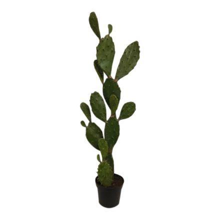 salg af Figen Kaktus, 120 cm. - kunstige planter