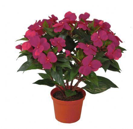 salg af Flittig Lise, 30 cm. - fuchsia - kunstige blomster