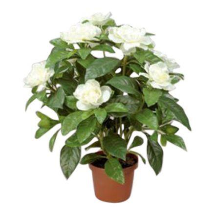 salg af Hvid Gardenia, 32 cm.- kunstige blomster