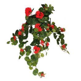 salg af Geranium hænge busk 70 cm. - rød