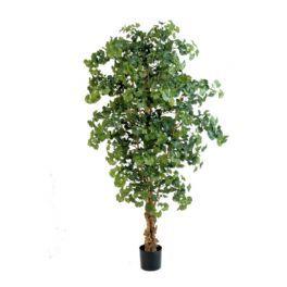 salg af Gingko - højde 210 cm. - kunstig træ