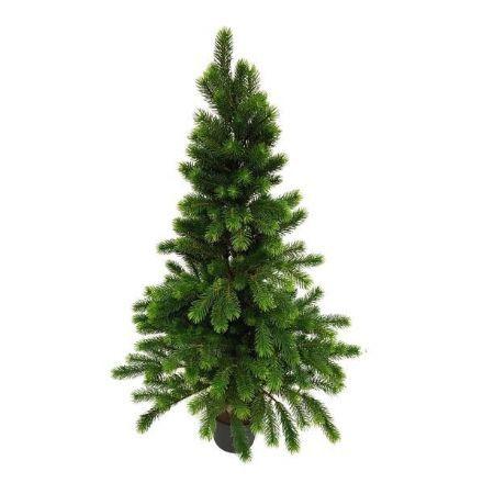 salg af Grantræ, 150 cm - Kunstige juletræer