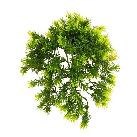 salg af Hængeplante længde 25 cm.