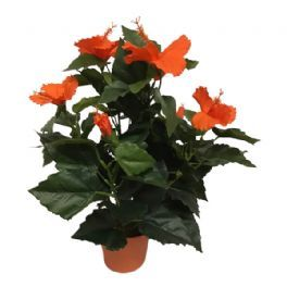 salg af Hawaiblomst orange, 42 cm. - kunstig blomst