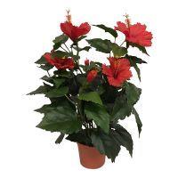 salg af Rød Hawaiblomst, 42 cm. - kunstige blomster