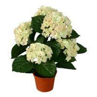 salg af Hvid Hortensia, 53cm. - kunstige blomster